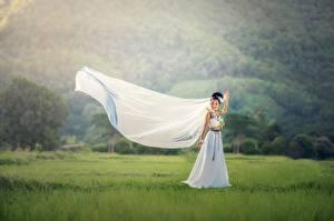 Обои Азиаты Невеста Брюнетка Платье Трава Свадьба Девушки картинки