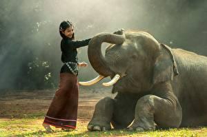Обои Азиаты Слоны Брюнетка Трава Животные Девушки