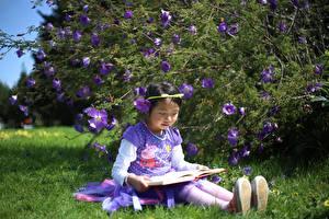 Картинки Азиаты Трава Сидящие Книга Девочки Ребёнок