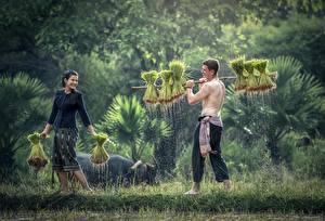 Картинка Азиаты Мужчины 2 Трава