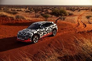 Фото Audi Пустыни Универсал 2018 E-Tron Prototype Автомобили
