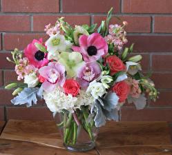 Обои Букеты Анемоны Розы Орхидеи Левкой Цветы картинки