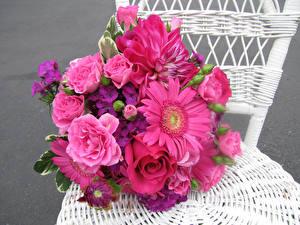 Фотографии Букеты Розы Герберы Георгины Гвоздики Стулья Розовый Цветы