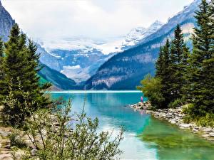 Фотография Канада Горы Озеро Камни Ели Lake Louise Alberta Природа
