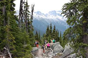 Картинки Канада Горы Камни Мужчины Банф Идет Природа