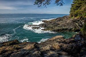 Обои Канада Парки Море Побережье Волны Vancouver Island Parks Природа картинки