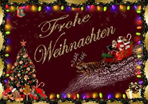 Фотография Рождество Олени Новогодняя ёлка Подарки Санки Санта-Клаус Немецкий