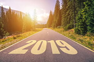 Фотографии Новый год Дороги Лес 2019 Асфальт Природа