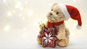 Фотографии Собака Новый год Звездочки В шапке Сидит