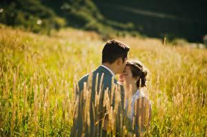 Картинки Поля Влюбленные пары Мужчина Вдвоем Поцелуй молодые женщины