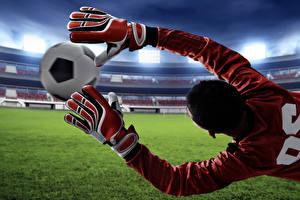 Обои Футбол Вратарь в футболе Мяч Руки Перчатки Прыжок Спорт