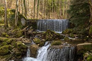Картинки Леса Камни Водопады Мох