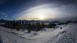 Фото Германия Зимние Горы Рассветы и закаты Бавария Снег Ель Goimenen Природа