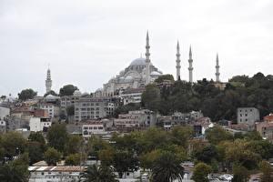Фотографии Стамбул Турция Дома Мечеть Деревья Sultanahmet