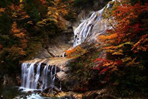 Обои Япония Осенние Водопады Скала Ubagataki Falls Природа