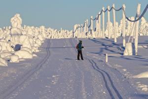 Картинка Лапландия область Финляндия Зимние Снеге Прогулка Природа