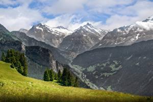 Картинка Горы Пейзаж Швейцария Трава Альпы Природа