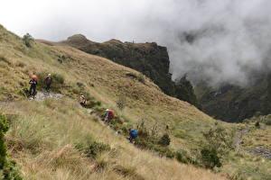Картинка Перу Альпинизм Туман Трава Тропа Гуляет Cuzco, The Inca Trail, Machu Picchu Природа