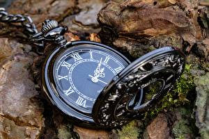 Фотография Часы Карманные часы Циферблат Вблизи