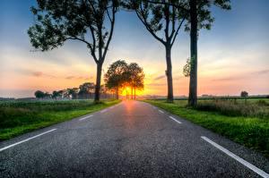 Фото Рассветы и закаты Дороги Трава Деревья Асфальт