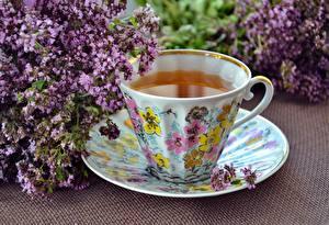 Фото Чай Чашка Блюдце Продукты питания