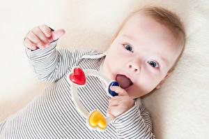 Картинки Игрушки Грудной ребёнок Смотрит Ребёнок