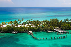 Картинки Тропики Море Курорты Пирсы Берег Пальмы Bahamas Природа