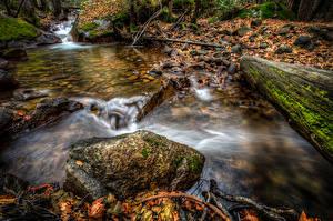 Обои Штаты Парки Осень Камень Калифорния Йосемити Мох Листва
