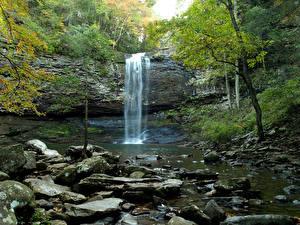 Обои США Парки Водопады Камни Скала Cloudland Canyon State Park Природа картинки