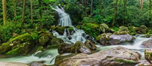 Фотографии США Парки Водопады Камень Мох Great Smoky Mountains National Park Природа