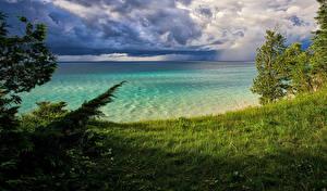 Фото Штаты Речка Побережье Трава Дерева Leelanau Michigan Природа