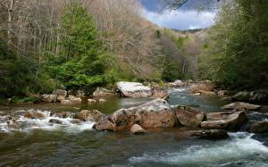 Картинки Штаты Речка Камни Леса Парки West Virginia,Williams River, Monongahela national forest Природа