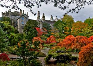 Обои Великобритания Замки Сады Осень Деревья Кусты Sizergh Castle Gardens Природа картинки