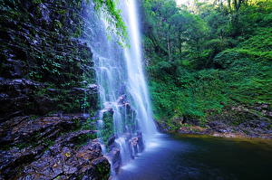 Фото Вьетнам Водопады Скала Мох Деревья Sapa