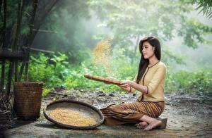 Фотографии Азиаты Брюнетка Сидит Зерна Девушки