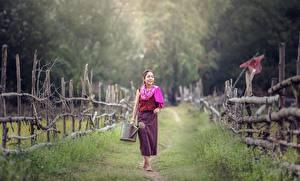Картинка Азиаты Забор Тропа Трава Девушки