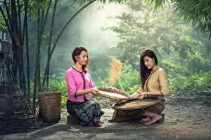 Картинки Азиаты Зерна 2 Сидящие Брюнетка Девушки