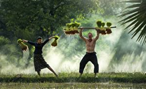 Картинка Азиаты Мужчины Вдвоем Тумана Трава Танцует Девушки