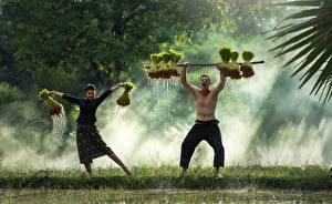 Картинка Азиаты Мужчины Два Тумана Трава Танцуют молодые женщины