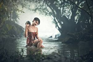 Фотография Азиаты Ручей Сидящие Туман Мокрые Брюнетка Девушки