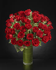Фотография Букеты Розы Серый фон Ваза Красный цветок