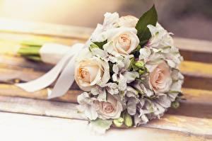 Фотографии Букеты Розы Свадьба