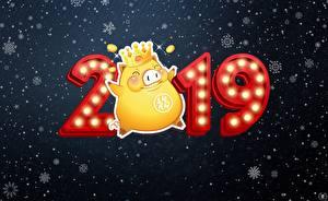 Фотографии Новый год 2019