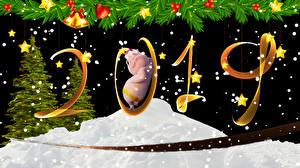 Картинки Рождество Домашняя свинья Черный фон 2019 Новогодняя ёлка Колокольчики Звездочки