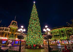 Картинки Рождество Штаты Диснейленд Парк Дома Калифорния Анахайм Елка Гирлянда Уличные фонари Подарок
