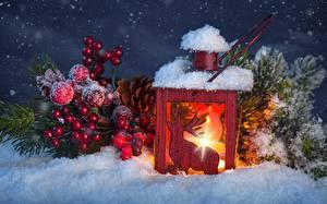 Фотография Пламя Ягоды Снег Лампа Шар
