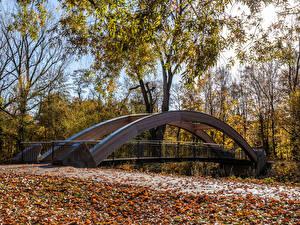 Картинка Германия Парки Осенние Мосты Деревья Листва Karlsruhe Природа