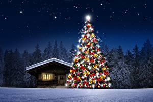 Фотография Дома Леса В ночи Елка Снег Природа