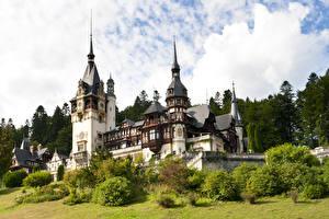 Фотографии Румыния Лето Замки Кусты Peles castle. Transylvania Города