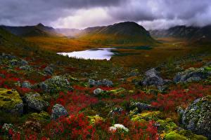 Обои Россия Крым Озеро Камни Пейзаж Холмы Мох